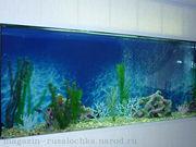 Русалочка аквариумы и тумбы на заказ.