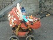 Детскую коляску Adamex Young